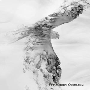 M_Ozgur_Free-Bird